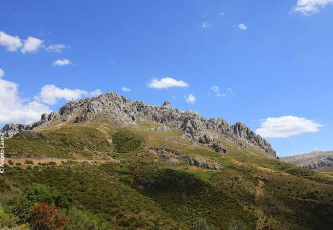 Monte-Albo-Consorzio-Tepilora-1