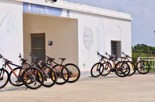 bici-noleggio-fornelli