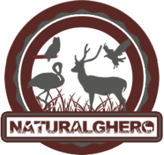 Naturalghero